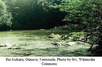 Rio_Icabaru_Orinoco_Venezuela_sm_by_fev_WikimediaCommons