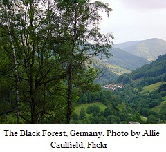 Black Forest by Allie Caulfield at Flickr