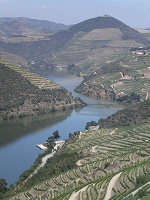 River Douro - photo by Npolvo via Wikimedia
