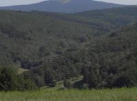 Taunus ridge
