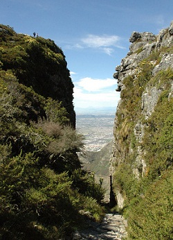 Table Mountain gorge - photo by cornstaruk at flickr