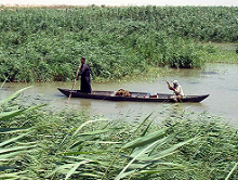 Marsh Arabs in southern Iraq