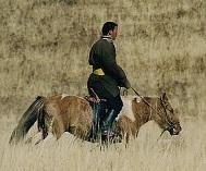 Mongolian rider - photo by Mark Heard via Flickr