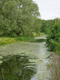 The Ardusson river which flowed past the Paraclete - Aube - France - photo by Hg marigny via Wikimedia